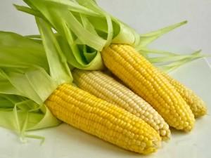 Manfaat jagung bagi kesehatan