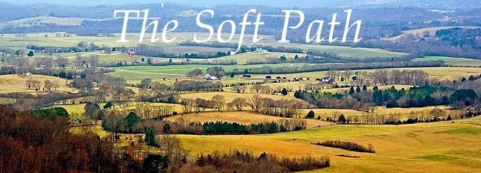 The Soft Path