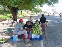 A venda do imbu na cidade