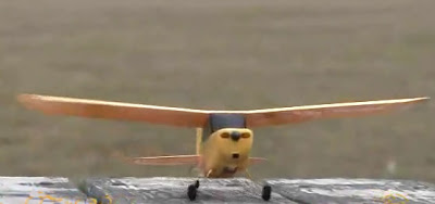 Champ RC Plane Images