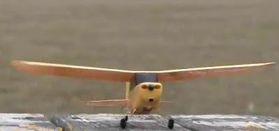 Champ RC Plane Images