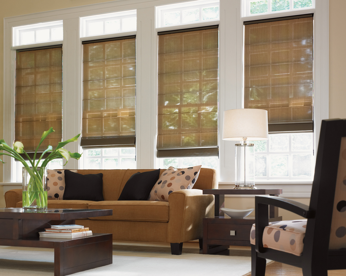 Youngblood interiors clean simple window treatments for Living room window blinds