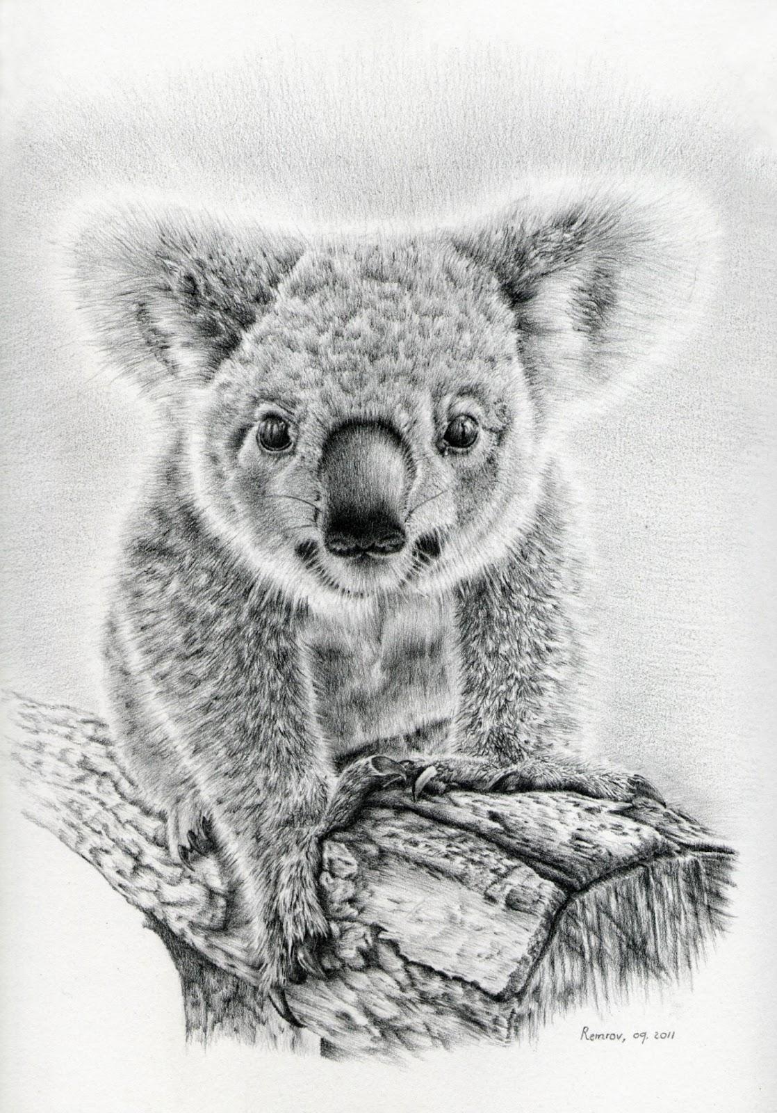 Remrov's Autistic Artblurbs: Koala Art, a project to help ...