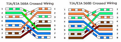 Urutan Warna Kabel UTP dan Susunan Kabel UTP