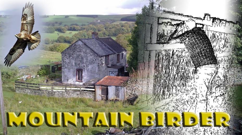 MOUNTAIN BIRDER