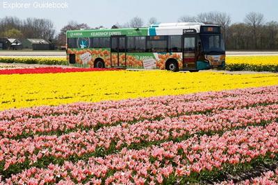 Panduan wisata transportasi cara ke Keukenhof Belanda