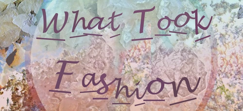 What Took Fashion by Teresa