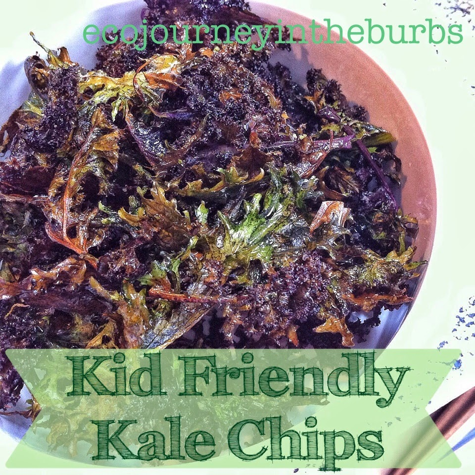 Eco Journey In The Burbs Diy Celery: Eco Journey In The Burbs: Kid Friendly Kale Chips