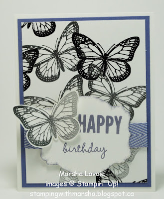 best of butterflies, celebrate today