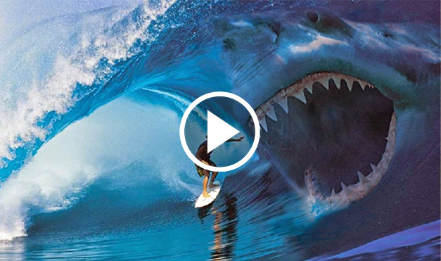 having been extinct for countless years the megalodon has influenced
