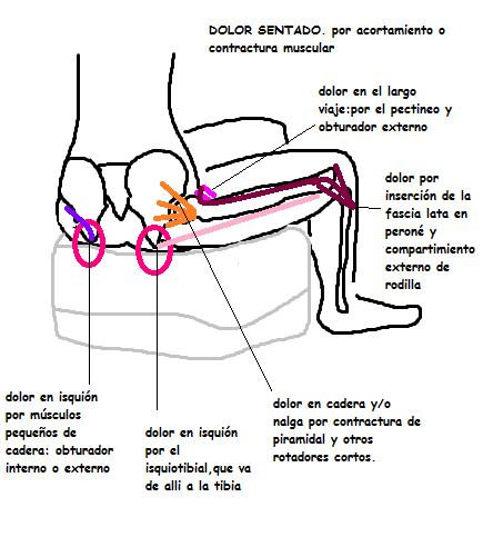 TIPS PARA ALIVIO DIARIO DEL DOLOR: Alivio del Dolor de Cadera y sus ...