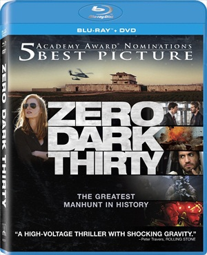 Zero Dark Thirty 2012 Dual Audio Hindi 480p BRRip 350MB