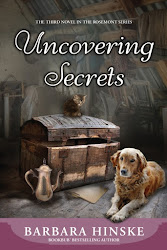 Uncovering Secrets by Barbara Hinske