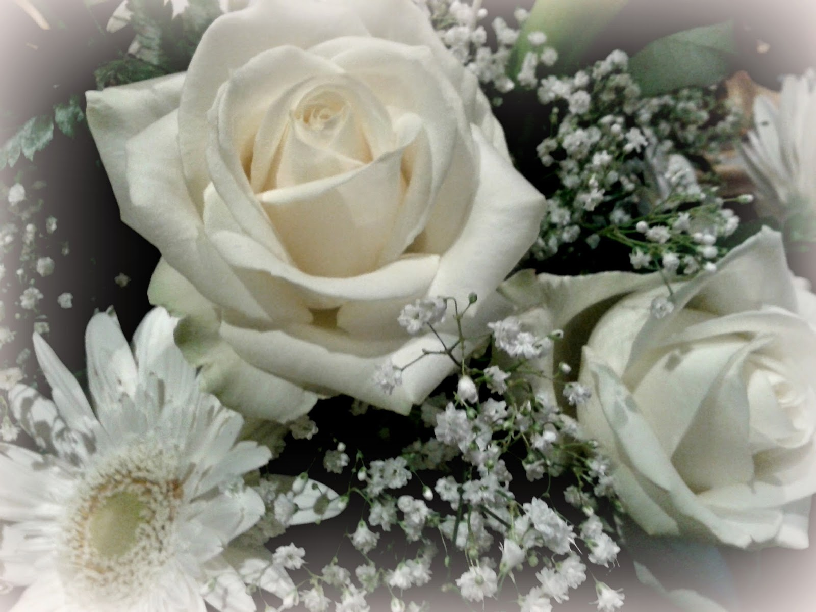 Matrimonio Girasoli E Rose Bianche : Svelato il mistero con una bellissima notizia