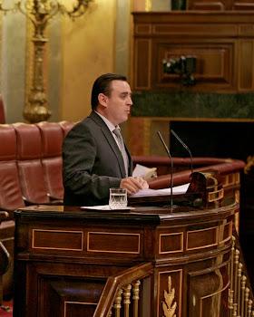Intervención en el Pleno del Congreso de los Diputados