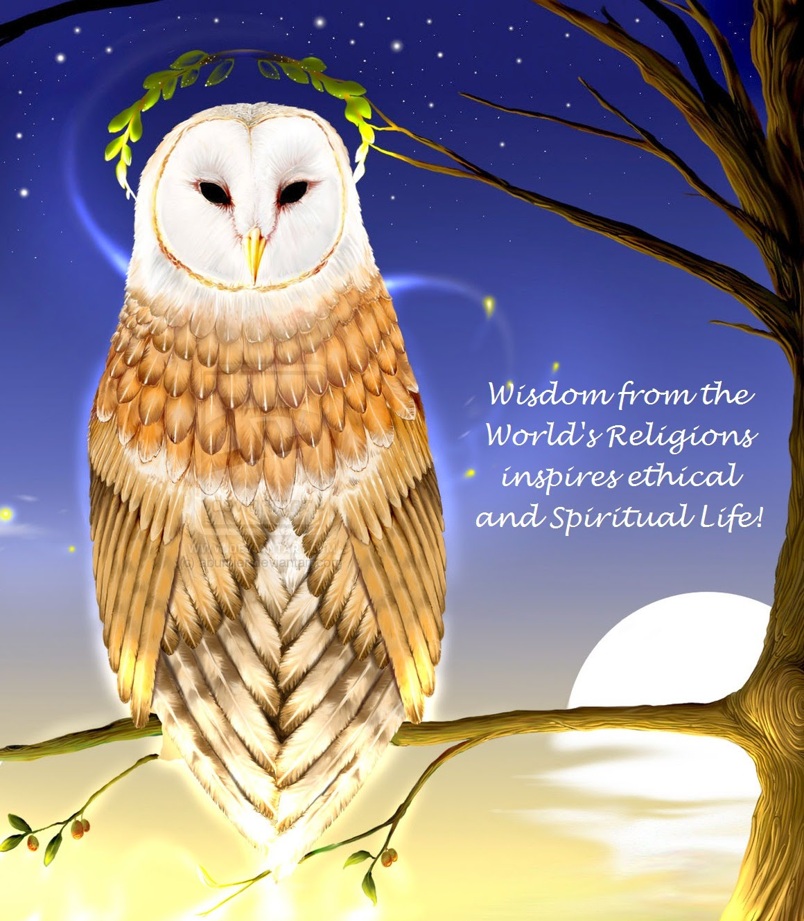 Nordic wiccan animals the barn owl tyto alba is the most widely distributed species of owl and one of the most widespread of all birds it is found almost anywhere in the biocorpaavc Images