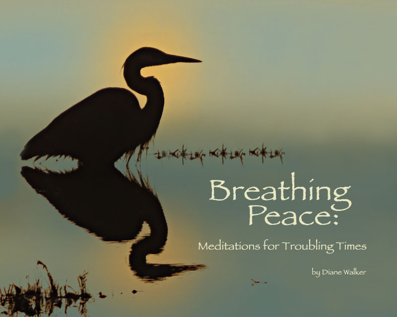 Meditations for troubling times