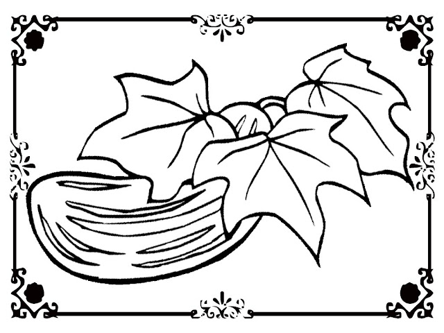 cucumber plant coloring page