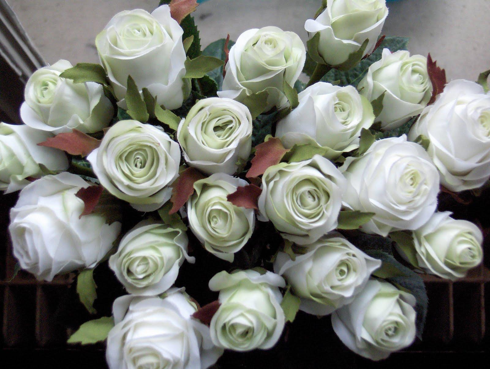 http://1.bp.blogspot.com/-HCntWZWKJJI/TkZOJYqD3tI/AAAAAAAABK8/gTJCatY3mmQ/s1600/trandafiri_albii.jpg