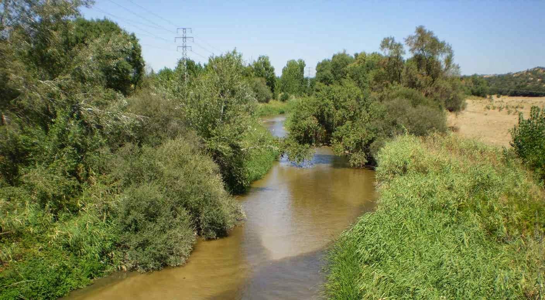 Agua y servidumbre en materia de aguas