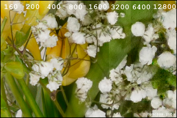 Fotografia con la Panasonic G5 a diversi ISO