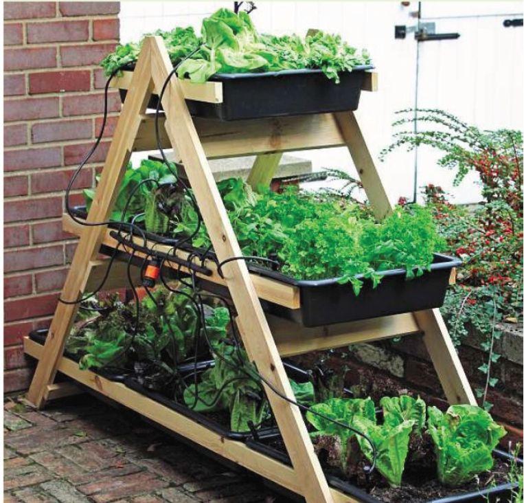A(z) 74 legjobb kép a(z) Konyhakert táblán   Gardening ...