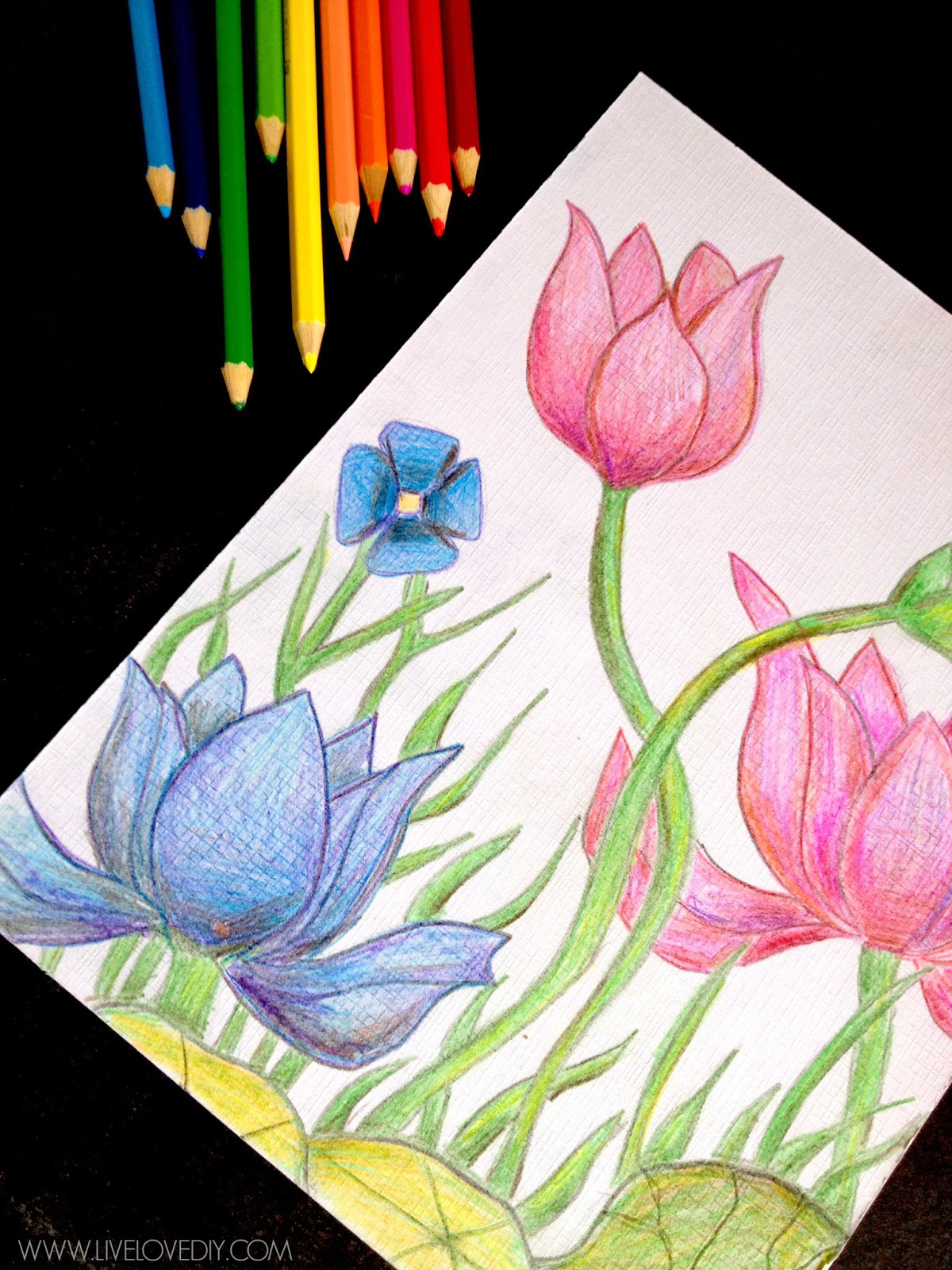 Livelovediy how to use watercolor pencils aka my for Watercolor drawing ideas