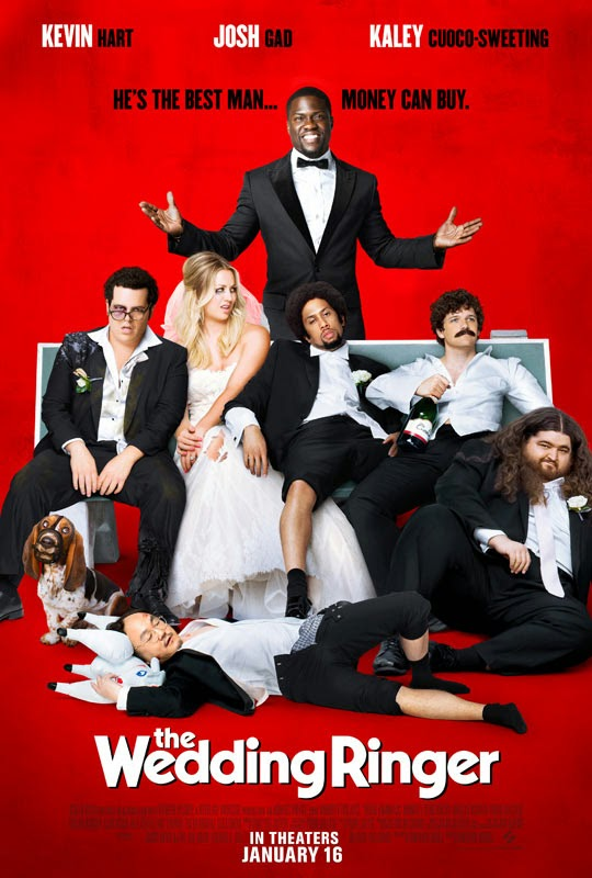 The Wedding Ringer (2015) tainies online oipeirates