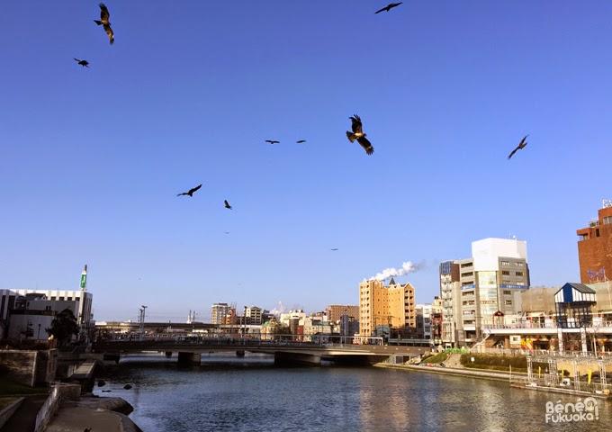 Kokura, Fukuoka
