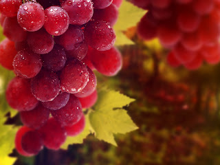 Wet Red Grapes Macro Photography HD Wallpaper