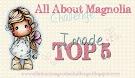 Top 5 challenge nº18