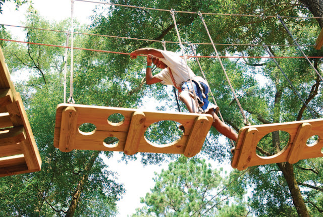 Tallahassee Museum's Tree to Tree Adventures Zip Line and Obstacle Course