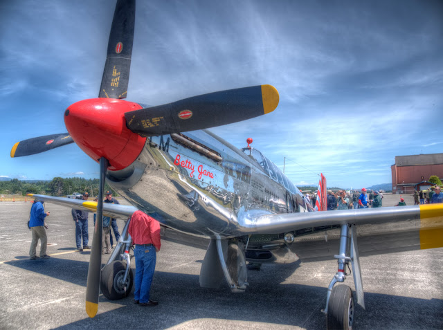 Wings of Freedom P-51 Mustang