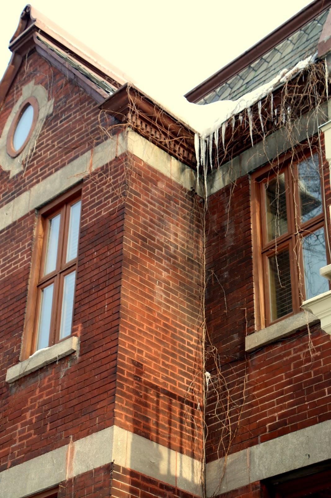 Collection d'hiver- Les Toits-2- Westmount, Montréal, Québec, Canada Photo: Shahrzad Ghaffari,MVM, 18 FEV.2015