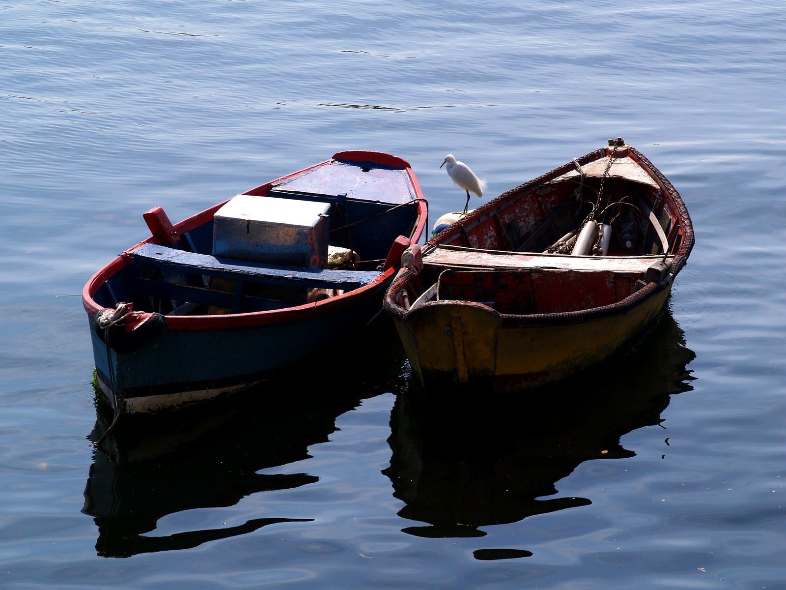 Confraria da poesia informal sobre barcos for Todo sobre barcos