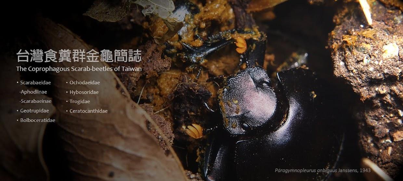 台灣食糞群金龜簡誌