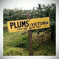 Roundstone Farm signage