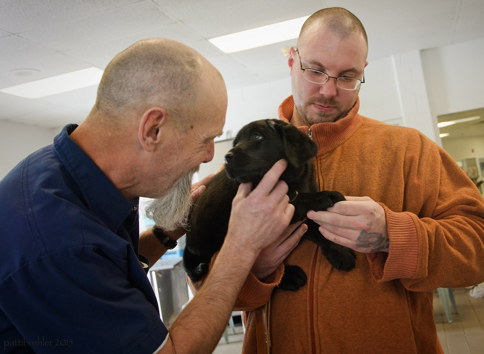 The man dressed in blue on the left is now looking at the black lab puppy, which is being held by the man on the right. The man on the left is petting the puppy under it's chin with his right hand. The man on the right is holding the puppy's left paw in his left hand and lookng down at it.