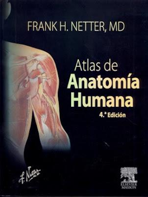 Portada del libro Anatomia Humana recomendado por la academia de dibujo Artistas6 de Madrid para aprender a dibujar la figgura humana