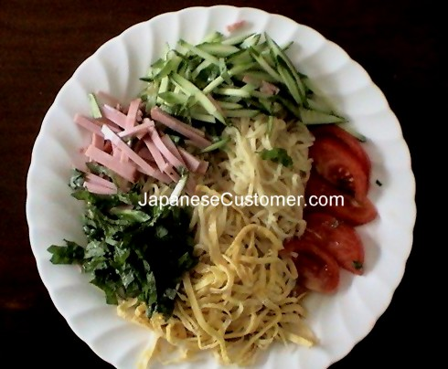 Noodle & dish (Hiyashi chuuka) Coypright Peter Hanami 2005