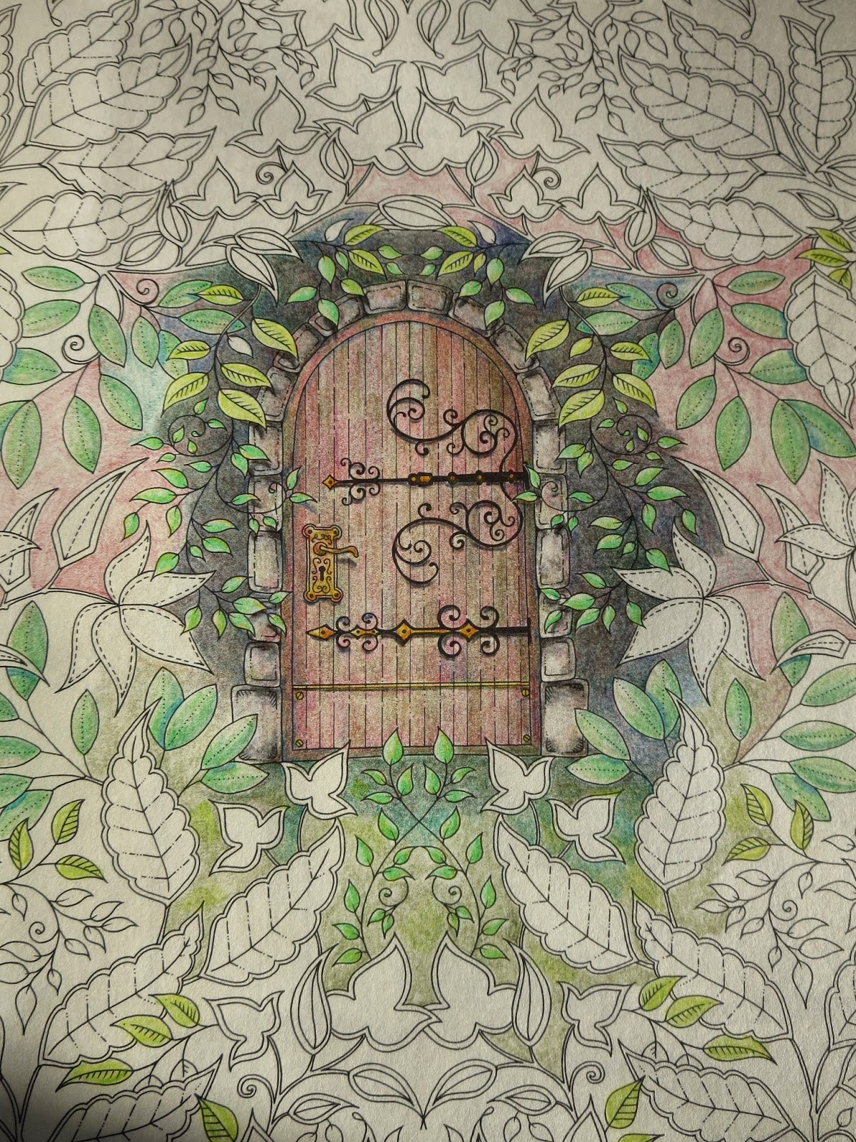 then i started adding colour to the background i layered browns blues greys greens and a little red in the background it took me many hours and im - My Secret Garden Coloring Book