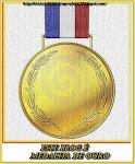 """Medalha criada por Elaine Averbuch para prestigiar todos os participarticioantes do """"MEME"""""""