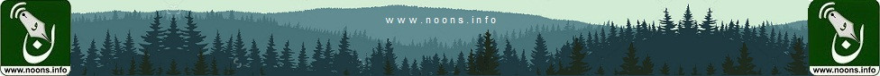 Noons.info