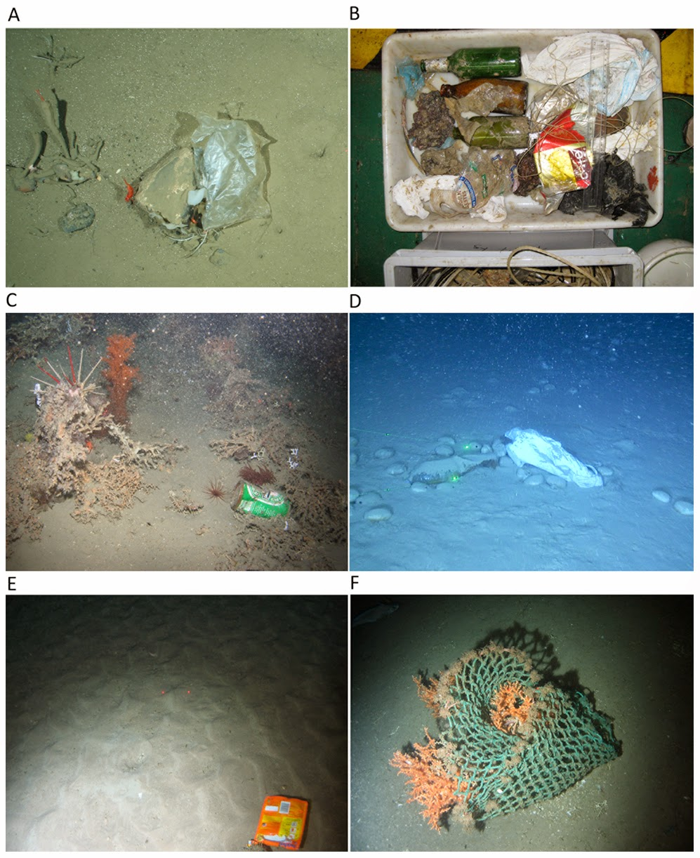 Sciency thoughts marine litter on the european seafloor - Plastics blanes ...