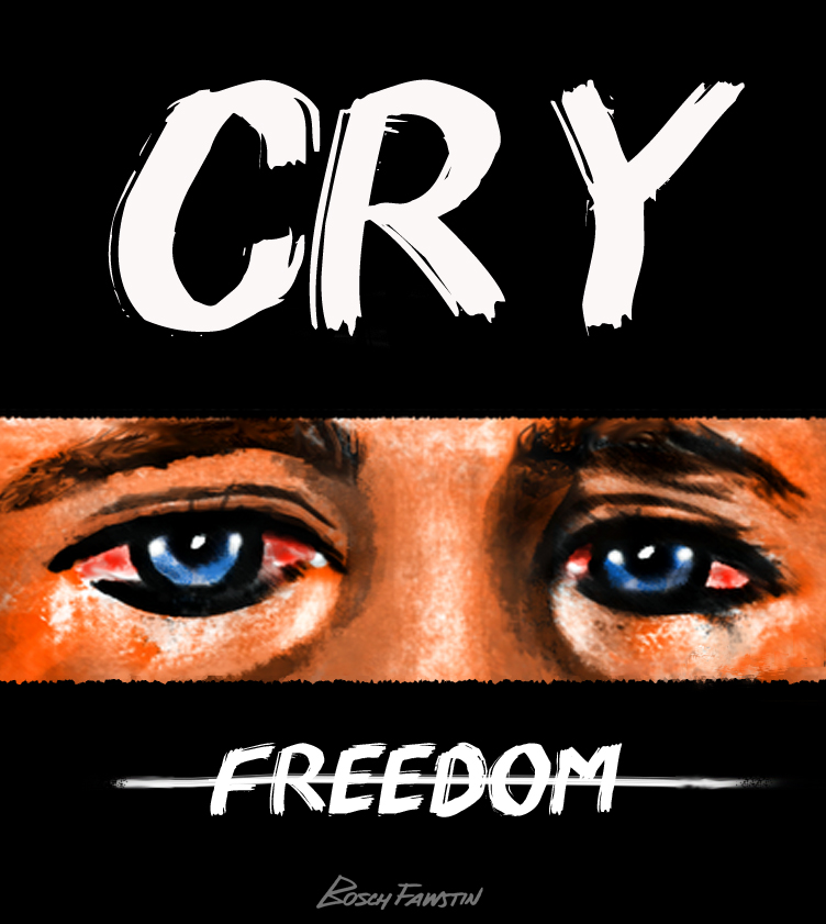 Cry freedom essays