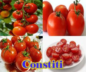 Manfaat Buah Tomat Bagi Kesehatan Tubuh