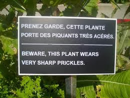 funny French translation errors