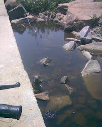 वर्धमान का गंदा पानी नर्मदा में प्रशासन कुम्भाकरनी नींद में प्रदूषण मंडल बेपरवाह