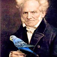 Попугай и Шопенгауэр
