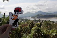 El catganer viatja per Laos.